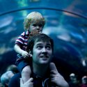 A man looks above at an arching walkway in an aquarium with his young toddler on his shoulders
