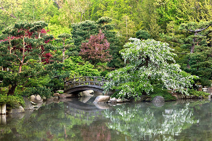 Reflection pond at the Anderson Japanese Gardens in Rockford, IL.