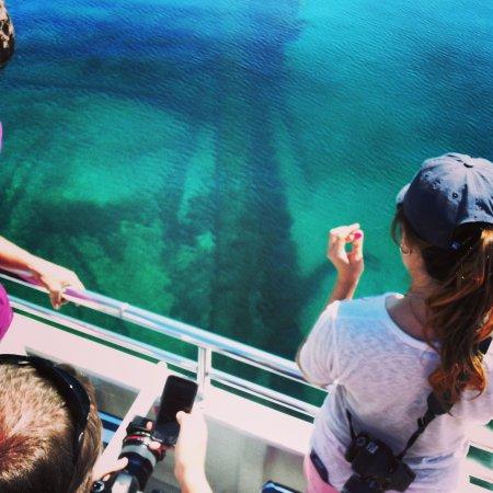 Visitors view a shipwreck on a glass-bottom boat tour in Alpena, Michigan.