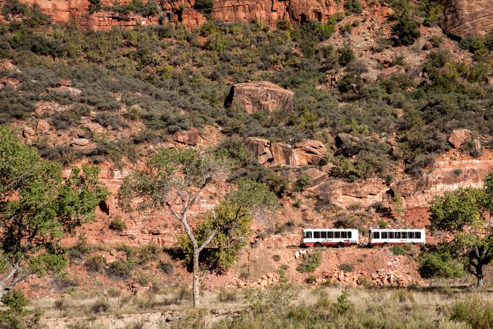 Shuttle busses in Zion National Park