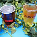 Two glasses of beer on a blue table with greenery in Stillwater, MN
