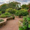 A garden in Stillwater, OK