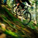 Mountain bike riding down the side of a hill in a green forest